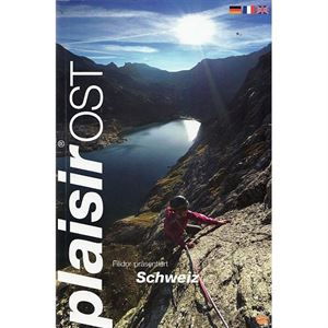 Swiss Plaisir Ost