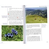 Walking in the Haute Savoie: South pages