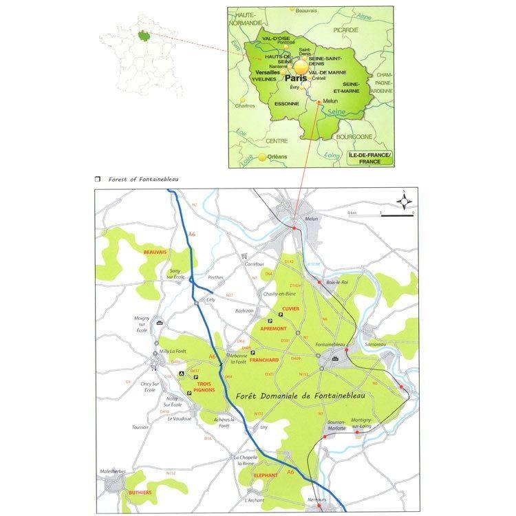 Essential Fontainebleau coverage