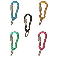 Fixe Mini Screwgate Karabiner Keyrings